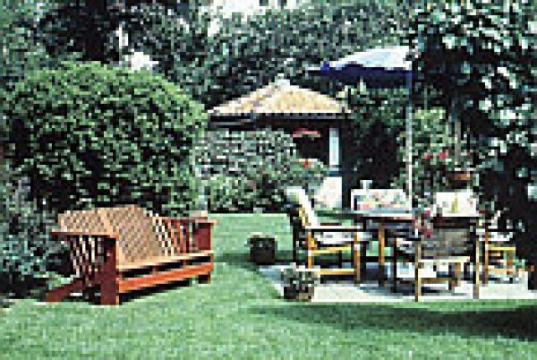wildacker saatgut samen shop topinambur wildblumensaat. Black Bedroom Furniture Sets. Home Design Ideas